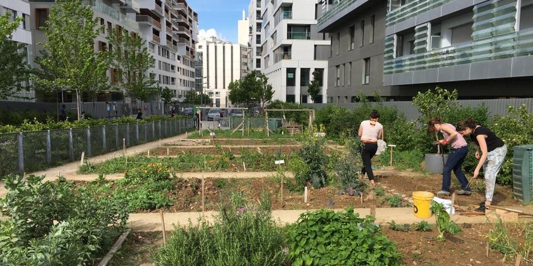 Comment faire pour que le partage de jardin se passe bien ?